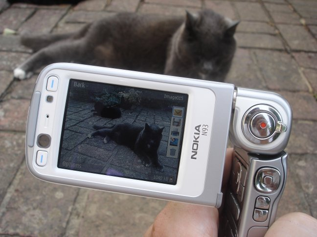 Nokia N93 filming a cat