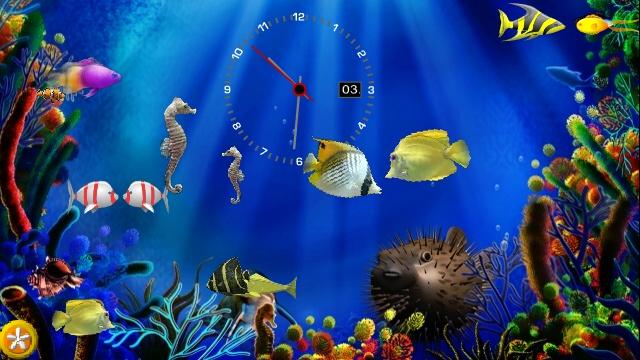 Fake aquarium with moving fish 1000 aquarium ideas for Fake fish tank with moving fish