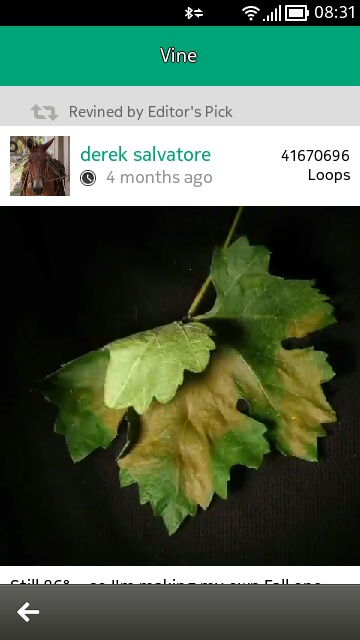 Vine screenshot
