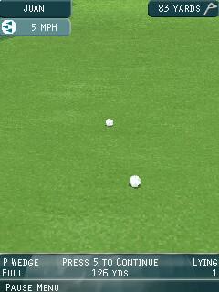 Pro Series Golf balls